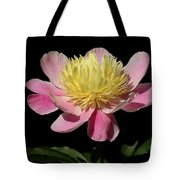 Yellow And Pink Peony Tote Bag