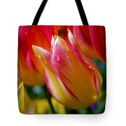 Yellow And Pink Tulips Tote Bag
