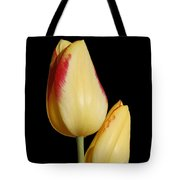 Yellow And Red Tulips  Tote Bag