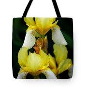 Yellow And White Irises Tote Bag