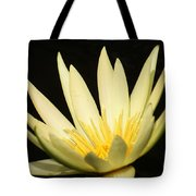 Yellow And Yellow Waterlily...   # Tote Bag