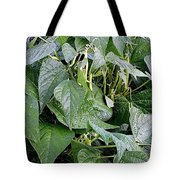 Yellow Beans Tote Bag
