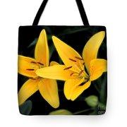 Yellow Beauties Tote Bag
