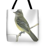 Yellow Bellied Elaenia  Tote Bag by Anonymous