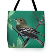 Yellow-bellied Flycatcher Tote Bag