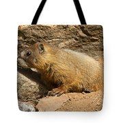 Yellow Bellied Marmot Checking Out The Neighborhood In Rocky Mountain National Park Tote Bag