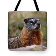 Yellow Bellied Marmot Tote Bag