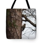 Yellow Bellied Sapsucker In The Pine Tote Bag