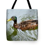 Yellow Billed Duck Tote Bag