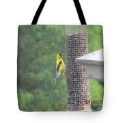Yellow Bird Feeding Tote Bag