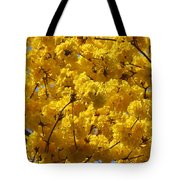 Yellow Blossoms Of A Tabebuia Tree Tote Bag
