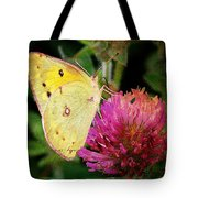 Yellow Butterfly On Pink Clover Tote Bag