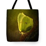 Yellow Butterfly Sitting On The Moss  Tote Bag