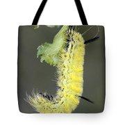 Yellow Caterpillar 1 Tote Bag