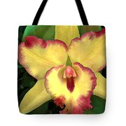 Yellow Cattleya With Red Ruffles Tote Bag