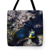 Yellow Chested Birdy Tote Bag