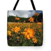 Yellow Cosmos Field In Flower Japan Tote Bag