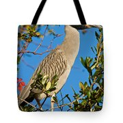 Yellow Crown Night Heron Tote Bag