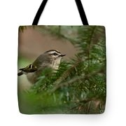 Yellow-crowned Kinglet Tote Bag
