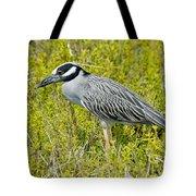 Yellow-crowned Night Heron Tote Bag