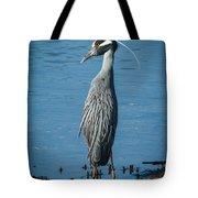 Yellow-crowned Night-heron Tote Bag
