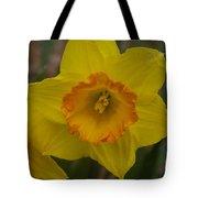 Yellow Daffies Tote Bag