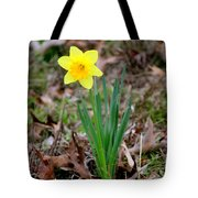 Yellow Daffodil At Lee Gardens Tote Bag