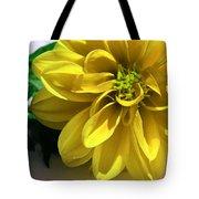 Yellow Dahlia Closeup Tote Bag