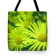 Yellow Daisies Close-up Tote Bag