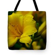 One Day Lily  Tote Bag