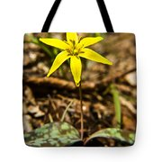 Yellow Dogtooth Trout Lilly Tote Bag