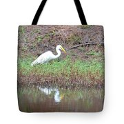 Yellow-eyed Beauty Tote Bag