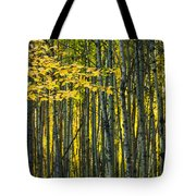 Yellow Fall Birch Leaves Against An Tote Bag