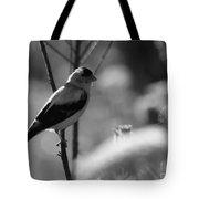 Yellow Finch B-w Tote Bag