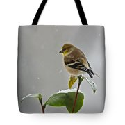 Goldfinch Tote Bag
