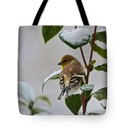Goldfinch On Branch Tote Bag