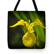 Yellow Flag Flower Outdoors Tote Bag