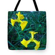 Yellow Flag Iris Tote Bag