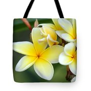 Yellow Frangipani Flowers Tote Bag