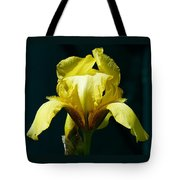 Yellow Glory Tote Bag