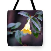 Yellow Green And Red Tote Bag