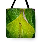 Yellow Green Skunk Cabbage Square Tote Bag