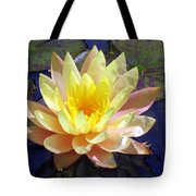 Yellow Hardy Water Lily Tote Bag