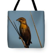 Yellow-headed Blackbird With Dragonfly Tote Bag