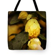 Yellow Hibiscus Late Afternoon Tote Bag