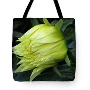 Yellow In Bloom Tote Bag