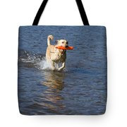 Yellow Lab Retrieving Toy Tote Bag by Linda Freshwaters Arndt