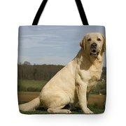 Yellow Labrador Dog Tote Bag