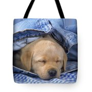 Yellow Labrador Puppy Asleep In Jeans Tote Bag