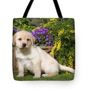 Yellow Labrador Puppy Tote Bag